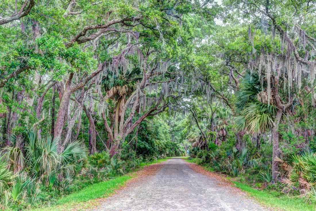 Pinckney Island Path