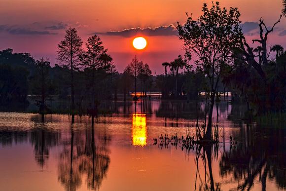 Wetlands Dawn 04/11/12